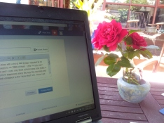 Laptop computer on a table in a garden. There are roses from the garden in a vase to the right of the computer. It is a sunny day.