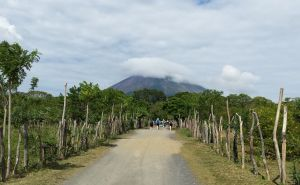 landcape image showing a cloud capped volcano in the distance with a dusty road lined with trees and fence posts leading towards it.  There are eome people walking along the road towards the volcano